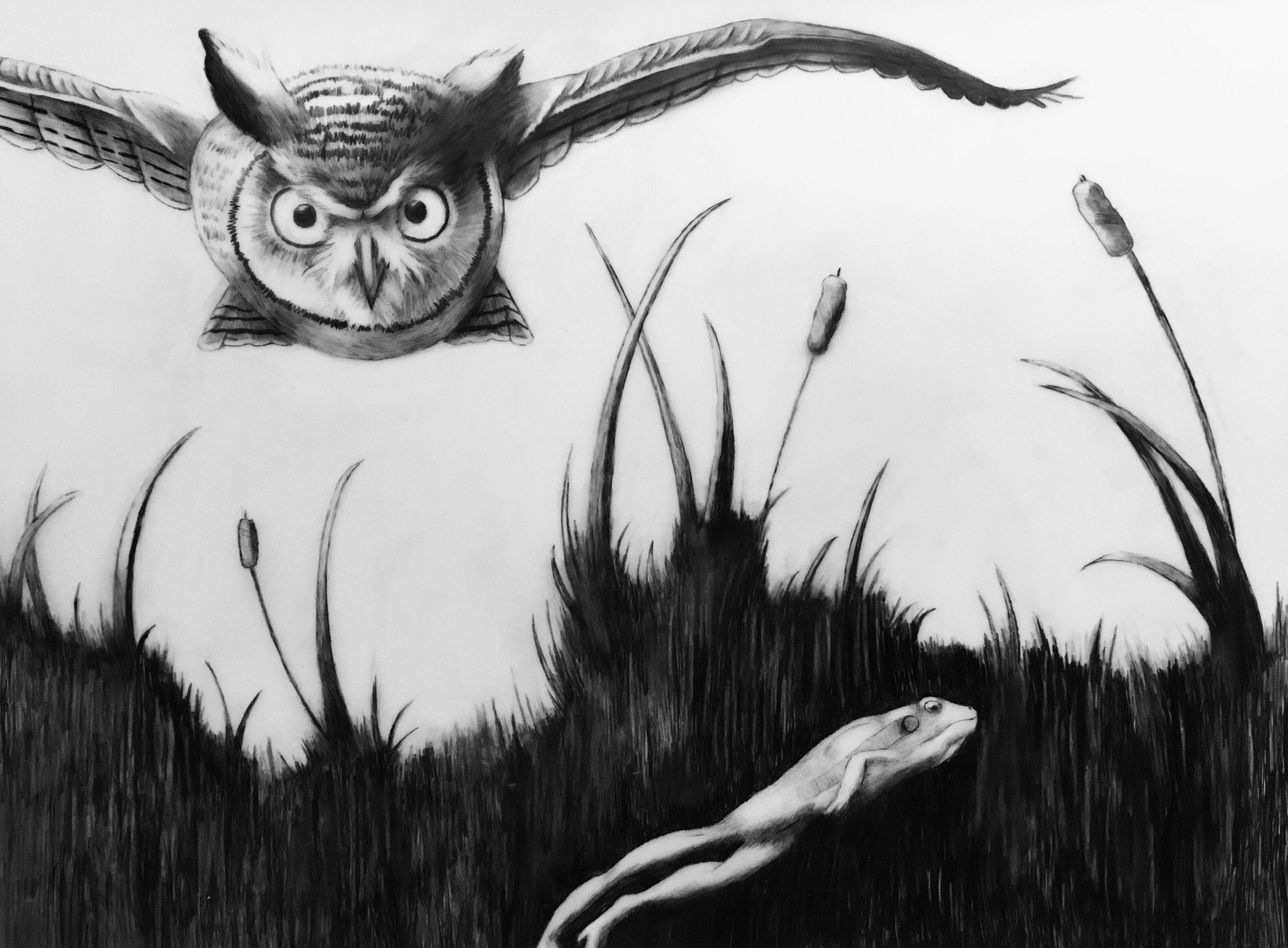 Krister-Owl-Frog-Pencil-Final